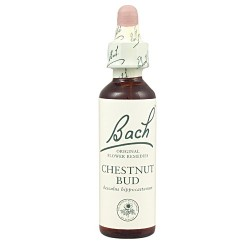 Chestnut Bud Flores originales 20 ml