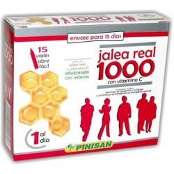 JALEA REAL 1000 15 viales - Pinisan