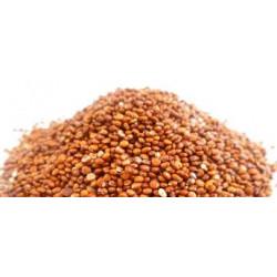 Quinoa Real Roja – BIO