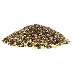 Quinoa Real Tricolor-BIO