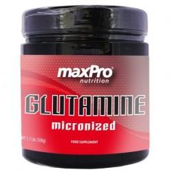 GLUTAMINA maxPro 500gr