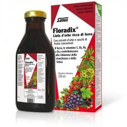 Floradix Jarabe 250 ml  Salus